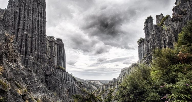 The Putangirua Pinnacles are large crumbly rock stalagmite type structures rising tens of metres into the air, left behind as the surrounding area erodes.