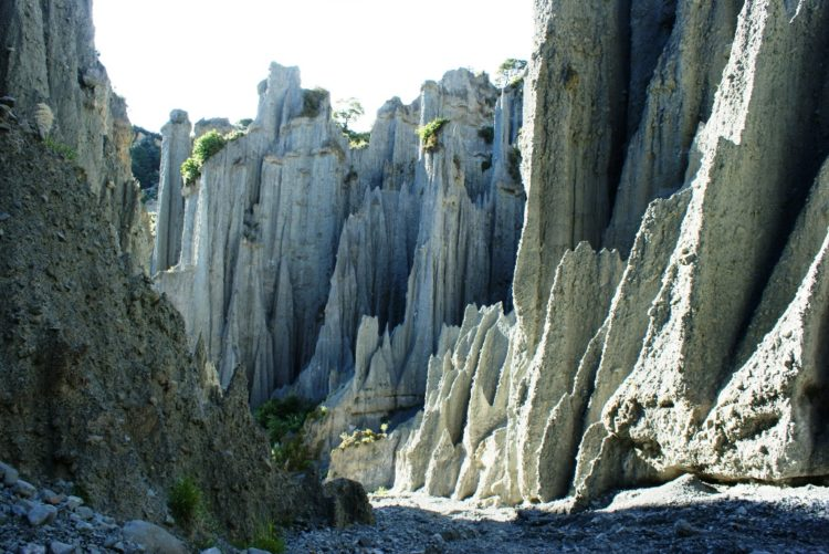 The Putangirua Pinnacles are one of New Zealand's best examples of badlands erosion.