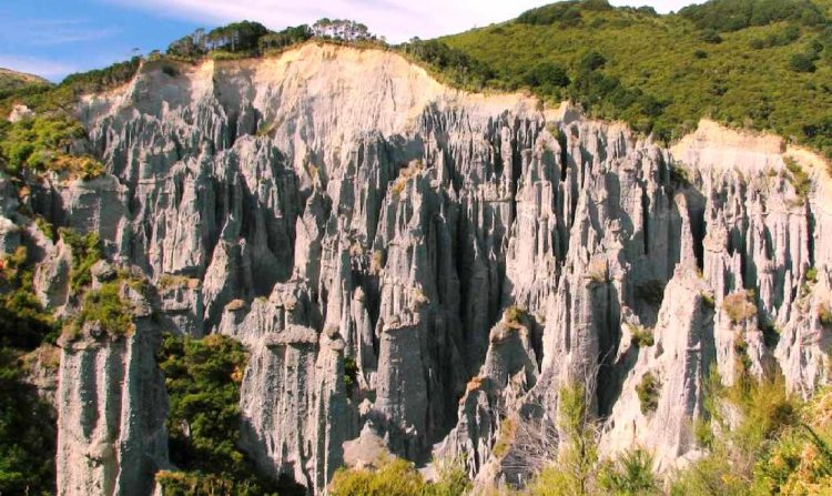 However at several places, the conglomerate is secure from erosion above by a cap of cemented silt or rock, resulting in the formation of amazing Pinnacles.