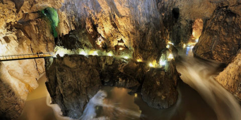 In 1999, the Škocjan Caves also entered on the list of Ramsar Wetlands of International importance along with the underground stream of the Reka River.