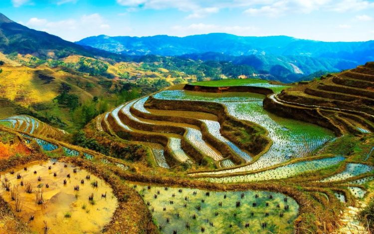 The Banaue Rice Terraces are approximately 2,000-year-old terraces that were beautifully carved into the mountains of Ifugao in the Philippines