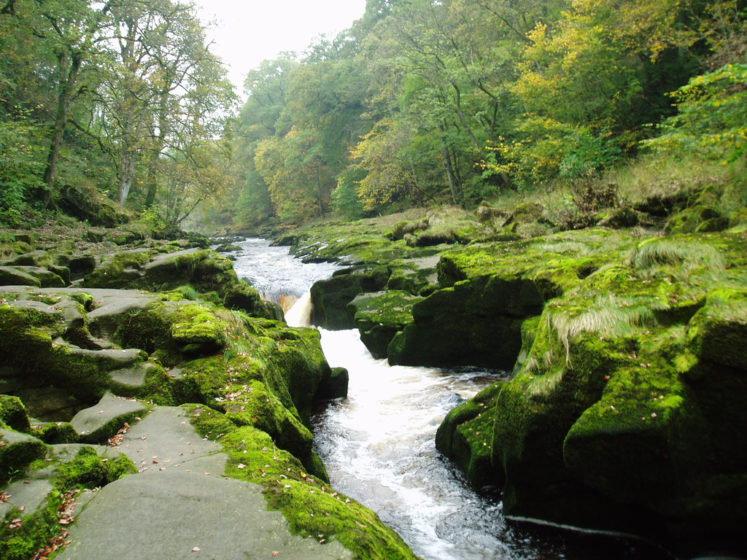 """it's a small innocuous-looking mountain stream, around 6 feet across, famous as """"Bolton Strid"""", or simply the """"Strid""""."""