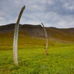 Whale Bone Alley of Yttygran Island