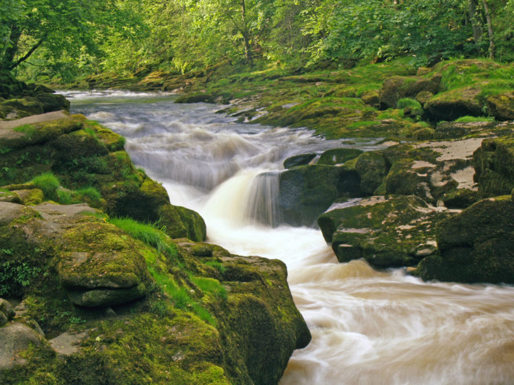 The human nature assume, they can jump the creek, walk across in the stone, or even wade through it, so most of time, the attempt gets in vain and they lost in Strid.