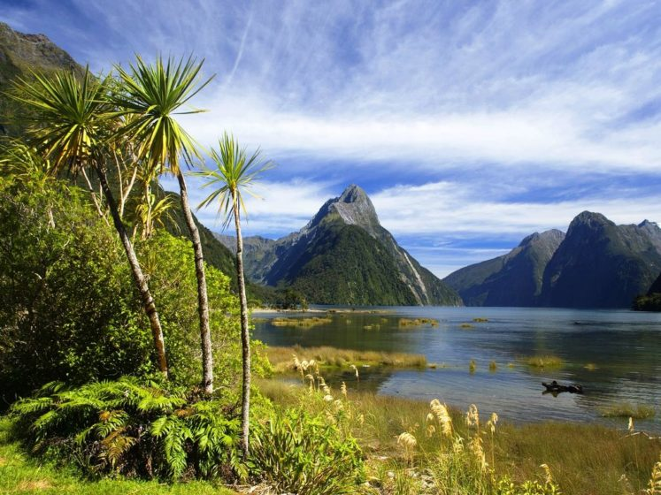 Milford Sound is part of Te Wahipounamu, a World Heritage Site as declared by UNESCO.