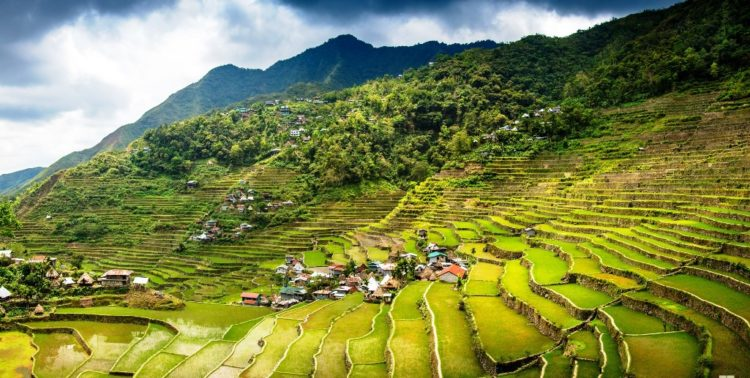 """the most prevalent place to look at the rice terraces is called the """"Sunrise Viewpoint"""", where local Igarot tribe's people pose for photographs and sell wood carvings."""