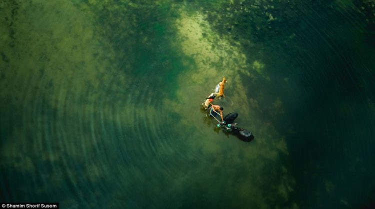 A couple leads their cattle through water in this photo taken from high above Bangladesh's Manikganj District