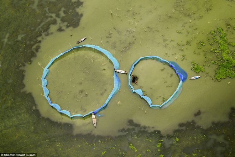 Susom said he is 'capturing the memoirs of my reconnection' through his aerial photography