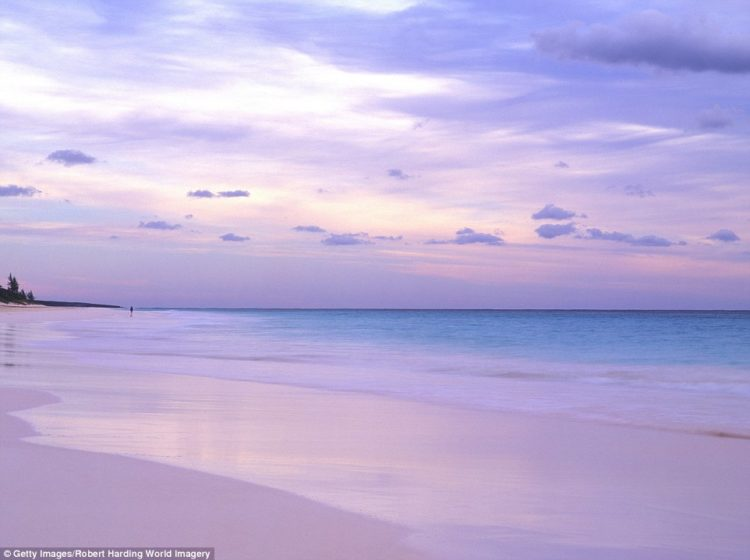 One of the most famous example of the phenomenon is Pink Sands Beach, a three-mile long stretch of sand on Harbour Island in the Bahamas