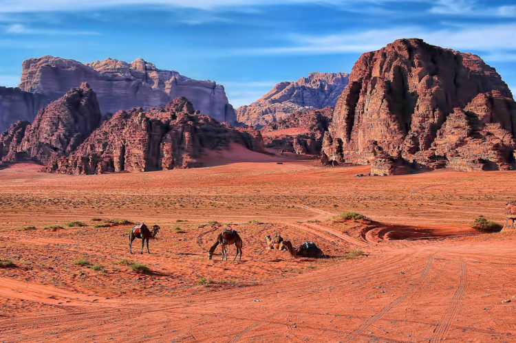The Wadi Rum (pictured) is also known as the Valley of the Moon, distinctive for its sandstone mountains and barren landscape