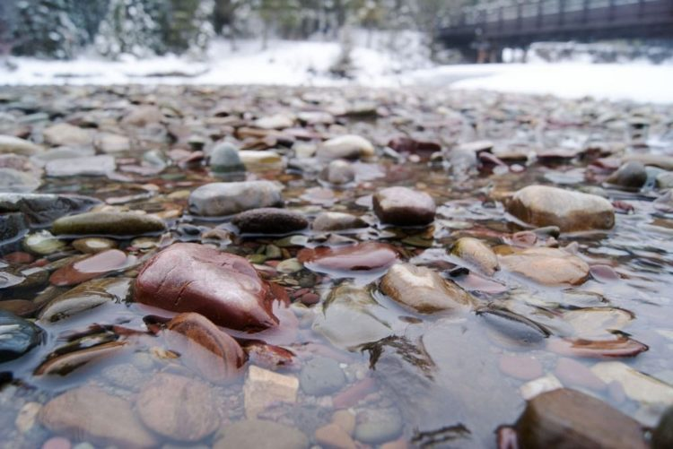 """The beautiful green rocks can be seen at """"Otokomi Lake"""", whereas the dark-colored rocks found at the upper end of Lake McDonald, along McDonald Creek and around Trout Lake are the result of subjecting the red and green iron-rich rocks to heat and pressure."""