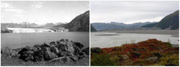 Carroll Glacier, Alaska. August, 1906 — September, 2003.