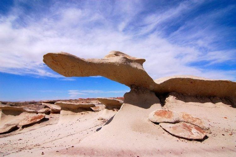 Moreover, erosion then formed the characteristic features of the contemporary landscape of the Bisti Wilderness.