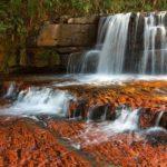 Jasper Creek Venezuela