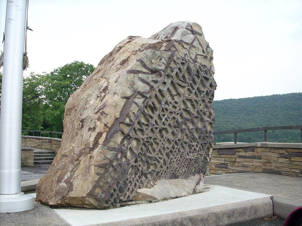 The one side of the rock appears a usual waffle-like geometric pattern of raised, darker stone that runs in almost completely straight lines across the rock's surface.