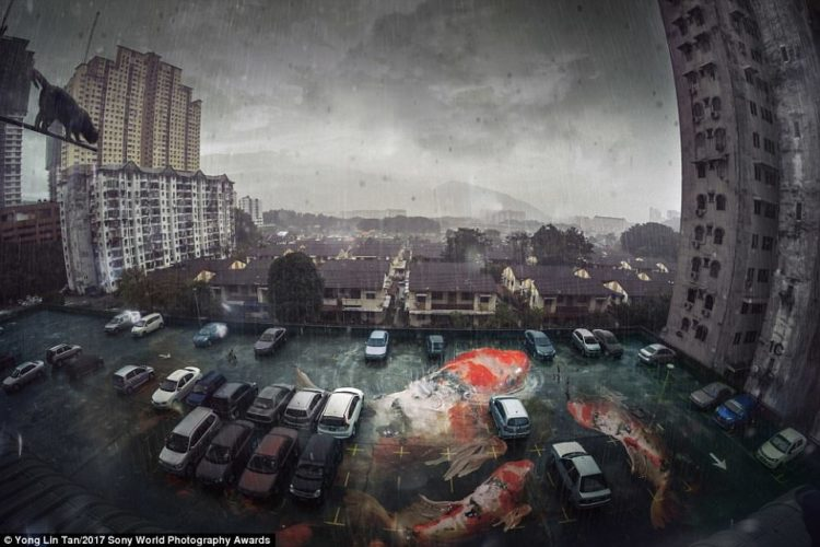 The composited and manipulated the photograph to deliver the surreal feeling of staying in a concrete jungle and the desire for freedom
