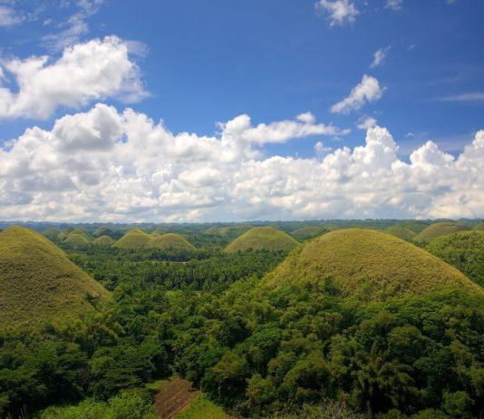 Bohol's most eminent natural attraction is Chocolate Hills which is covered with small grass & conical shaped hills scattered of over 50 SKM