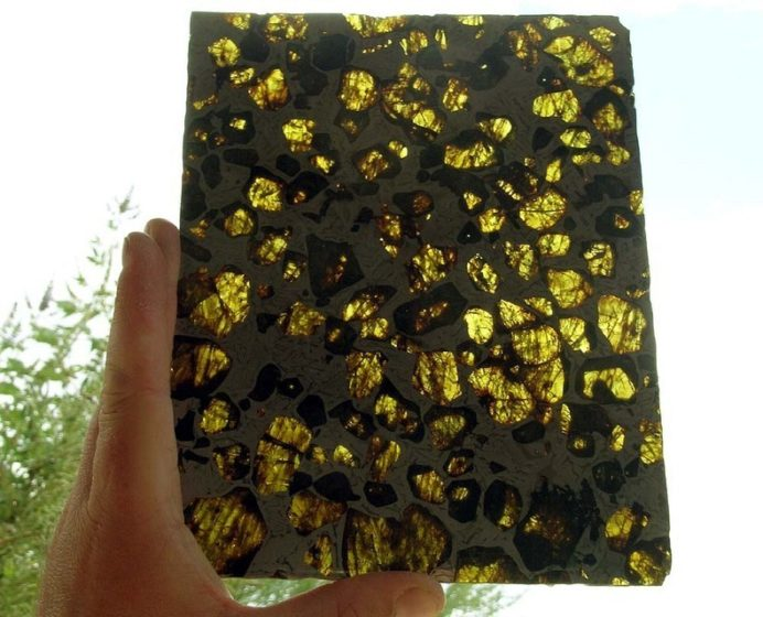 Within the rock, translucent golden crystals of a mineral called olivine gleamed among a silvery honeycomb of nickel-iron.