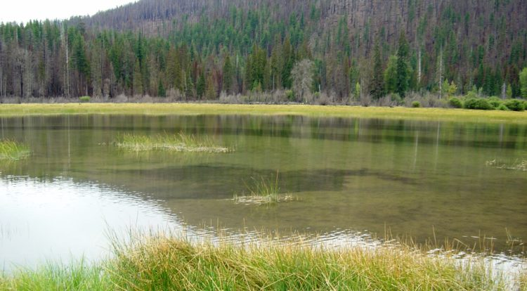 It is believed, Lost Lake was formed about 3,000 years ago when lava flowing from the Sand Mountain Line of small volcanoes blocked a river channel to create a small basin of water which now holds the lake.
