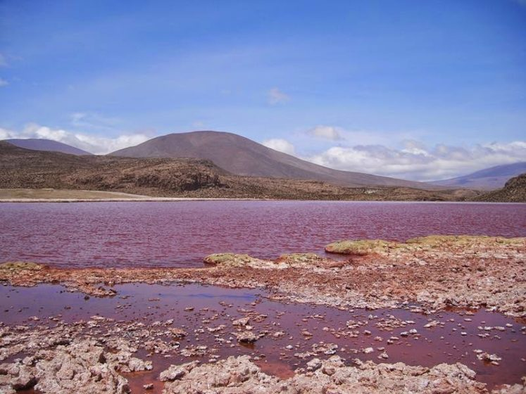 The water of the lagoon is so strong red that it seems like blood or ink. The lake was though familiar to locals, but unfamiliar for others