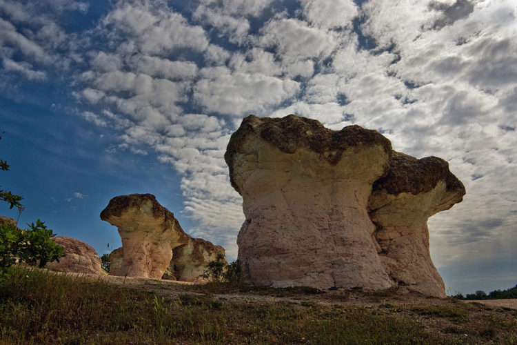 But the stone mushrooms in Beli Plast, Bulgaria are extremely unique, as entire clumps of massive stone pillars grouped together just like mushrooms in the wild.