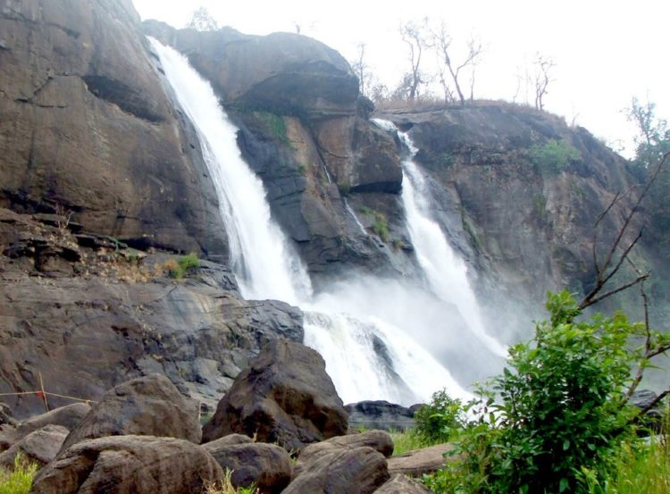 """The road down to """"Athirapally Falls"""" is breathtaking! Snake roads filled with an astonishing range of flora and fauna - rubber trees, palm trees, coconut trees and small streams running amidst them."""