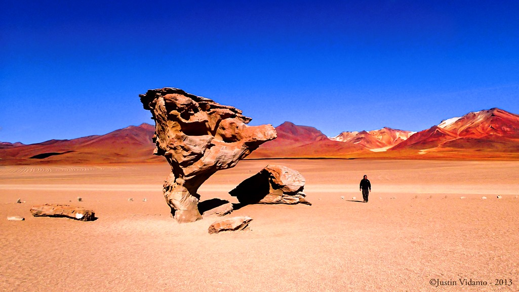 Siloli Desert has been whittled down into the exclusive shape of stone trees over time by sand and 120km/h winds that whip across 4,000m high Bolivian Altiplano in the colder months.