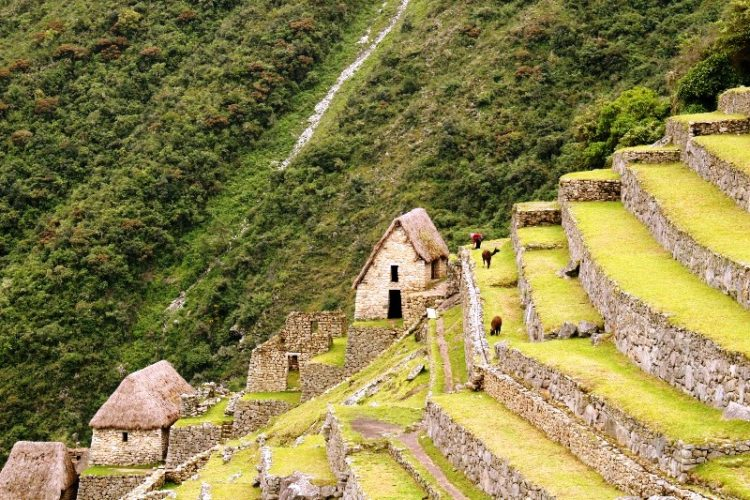 It was called the Sacred Valley because it contains some of the best land in the region and was not a part of the Empire but the property of the Emperor or Inca himself.