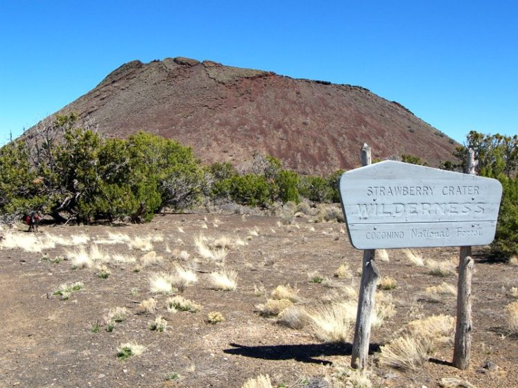 The Strawberry Cone wilderness area covers 10,743 acres, comprising of cinder cones, hills, and arid terrain.