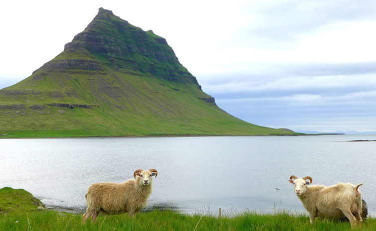 """Kirkjufell is most favorite for film making location featuring as the """"arrowhead mountain"""" that the Hound and the company north of the Wall see when capturing a wight."""