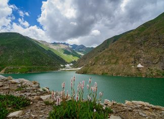 Lulusar Lake is wreathed in blue and gold wild flowers enchanting beauty and its view remains in the mind of tourist for a long time.