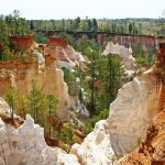 Providence Canyon is a perfect example of a testament to the power of man's influence on the land. Surprisingly it isn't at all natural. Many Georgians aren't aware of Providence Canyon It's situated in an outdoor recreation area that encompasses 1,103 acres and 16 canyons.