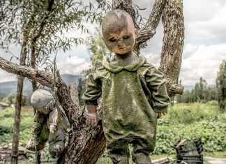 The island of dolls is a creepiest destination in Xochimilco, Mexico.