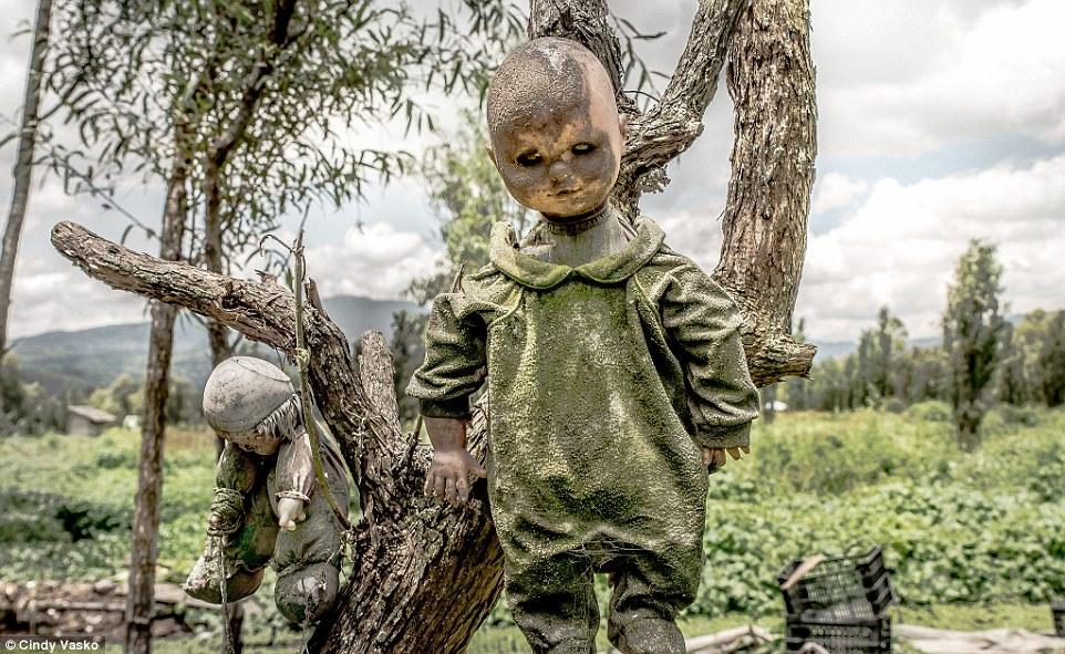 The island of dolls is a creepiest destination in Xochimilco, Mexico.