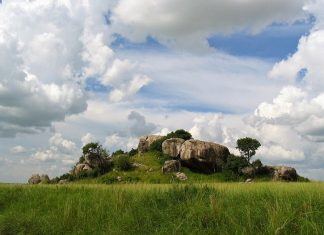 The rock is standing impressively around plains of savannah with vegetation surrounded by bushes and grass.