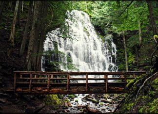 your trip would have been fun relatively easy hike! Be prepared to walk on a log to cross the river!