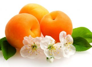 Apricots are a solid dietary source of catechins, a broad family of flavonoid phytonutrients.