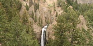 Tower Fall is one of the prettiest waterfalls on Tower Creek in the northeastern region of Yellowstone National Park, Wyoming, in the United States.