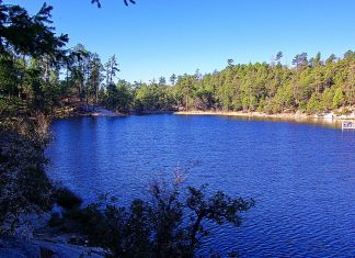Rose Canyon Lake is small ecologically fragile reservoir, but it is famous for trout fishing lake.