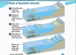 How Tsunami Occurs? The tsunami is a series of ocean waves, carry water to the big heights of over 100 feet about 30.5 meters, to the earth.