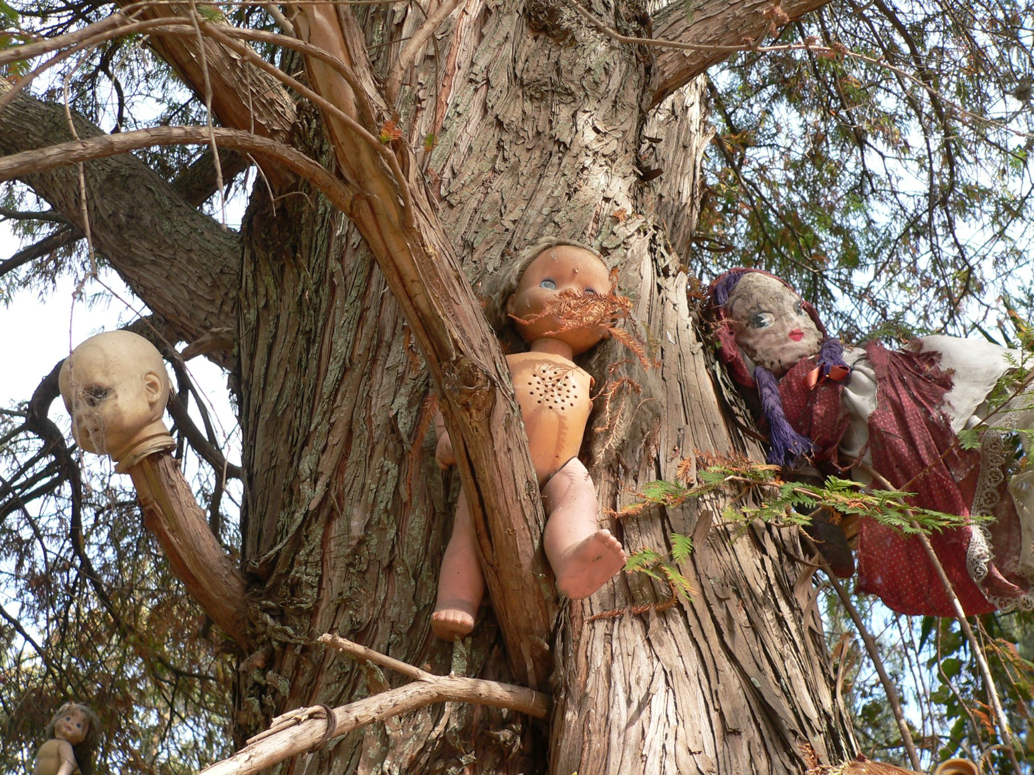 Island of Dolls is also known locally as the 'chinampas'