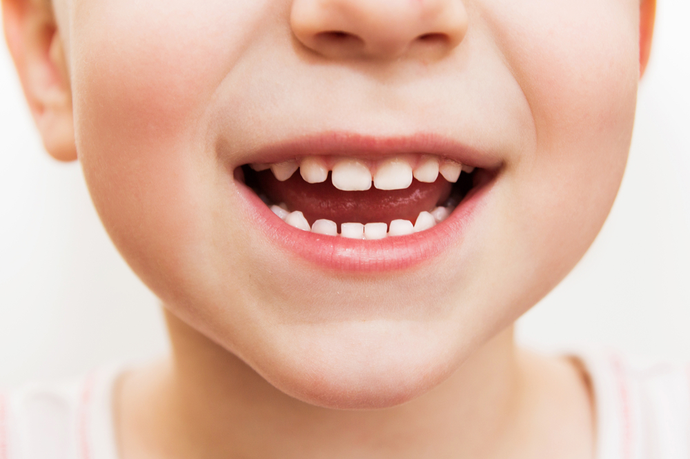 How Do Our Teeth Grow? Healthy teeth are most prominent part of your personality. That helps us to smile at any place, take bite, can speak, or even have your favorite food without any problem.
