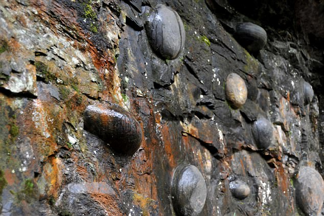 Mysterious Chinese Cliff Lays Egg Shaped Stones