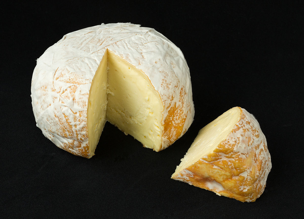 Is Cheese Bad for You or Healthy Food? This question often comes in human minds. For almost 8,000 years, a variety of cheeses have been made from milk around the world.