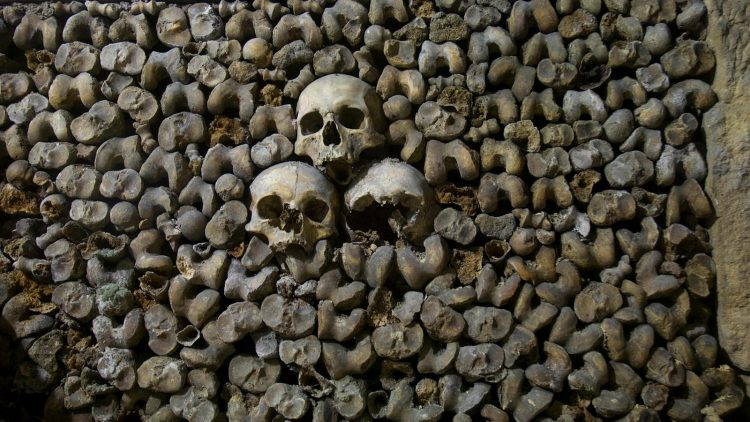 In Paris's catacombs, bodies were stacked on top of each other to use space as efficiently as possible