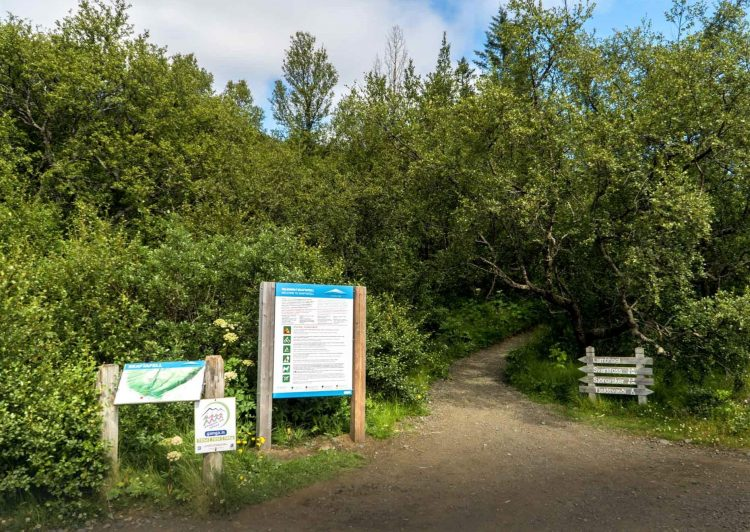 The hike to Svartifoss is about one and a half kilometers takes 45 minutes to one way.