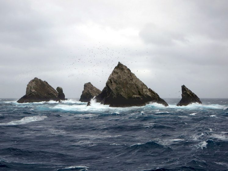 The Shag Rocks are six small islands in the westernmost extreme of South Georgia, 240 km west of the main island of South Georgia and 1,000 km off the Falkland Islands.