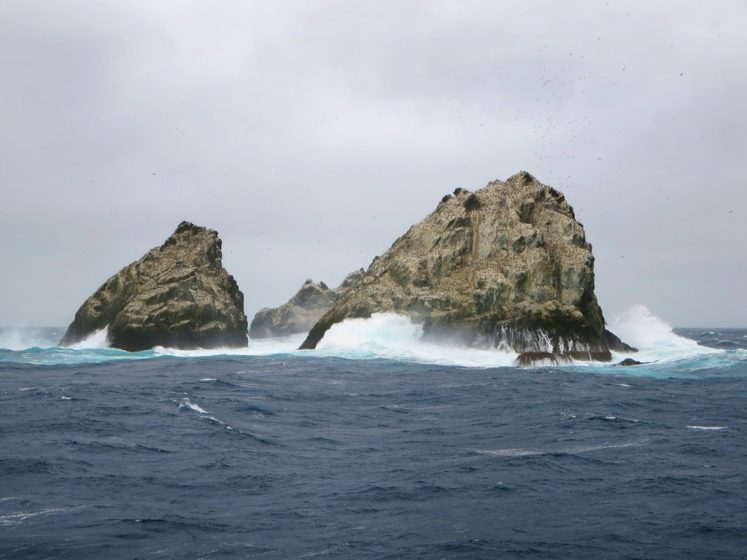 Prior to 1985, they came within the Falkland Islands Dependencies. However, the Shag Rocks and Black Rock are laying claims by Argentina.