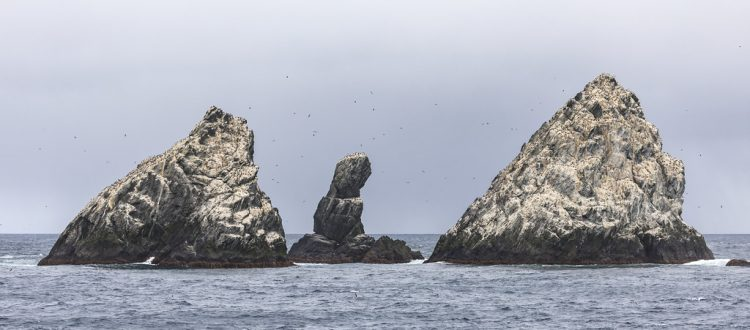 The Shag Rocks form part of the British overseas territory of South Georgia and the South Sandwich Islands.