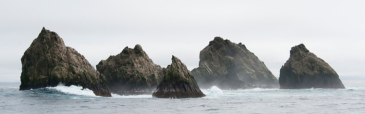 Shag Rocks has been the site of several shipwrecks. The history tells us, that in 1762, Shag Rocks (Islas Aurora) discovered by Jose de la Llana with the Spanish Ship Aurora.